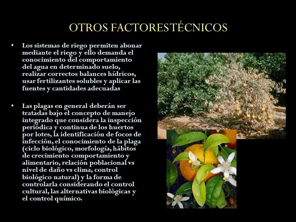 OTROS FACTORES TÉCNICOS