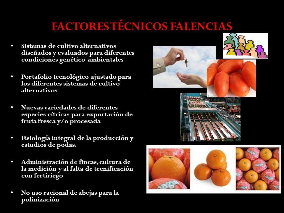 FACTORES TÉCNICOS FALENCIAS