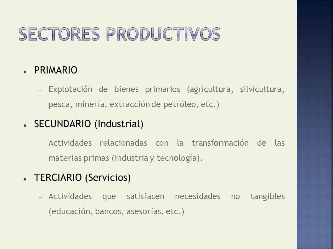 SECTORES PRODUCTIVOS PRIMARIO SECUNDARIO (Industrial)