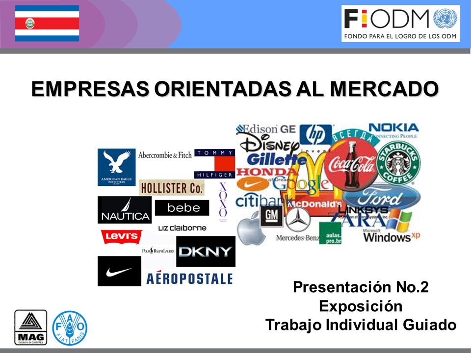 EMPRESAS ORIENTADAS AL MERCADO Trabajo Individual Guiado