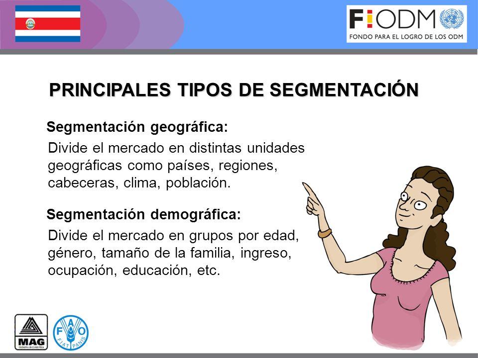 PRINCIPALES TIPOS DE SEGMENTACIÓN