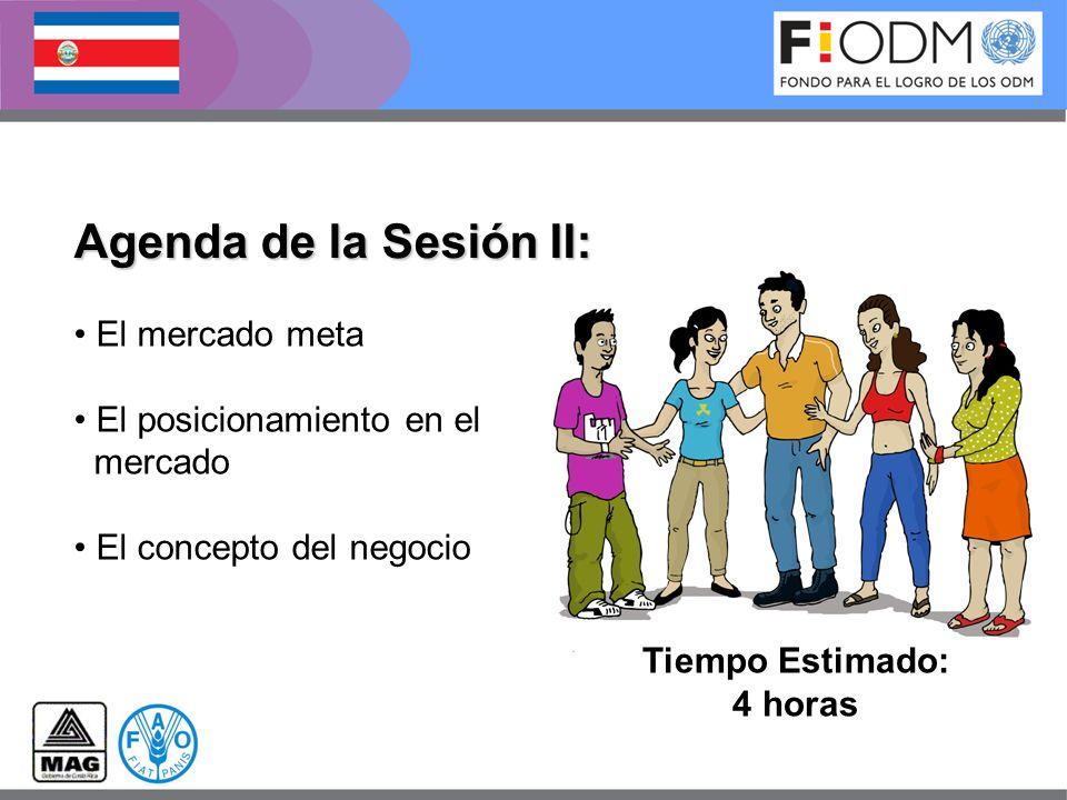 Agenda de la Sesión II: El mercado meta El posicionamiento en el