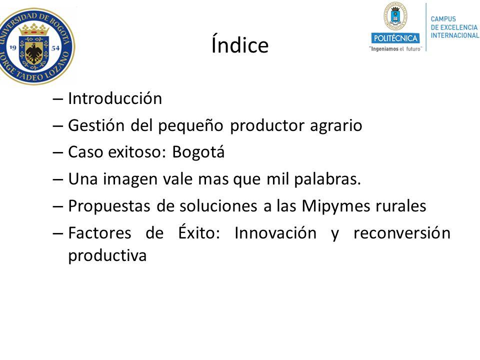 Índice Introducción Gestión del pequeño productor agrario