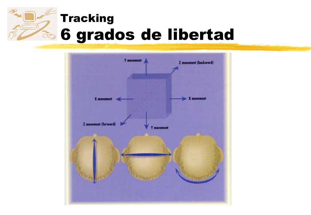 Tracking 6 grados de libertad