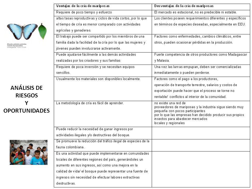 ANÁLISIS DE RIESGOS Y OPORTUNIDADES