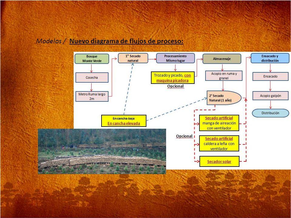 Modelos / Nuevo diagrama de flujos de proceso: