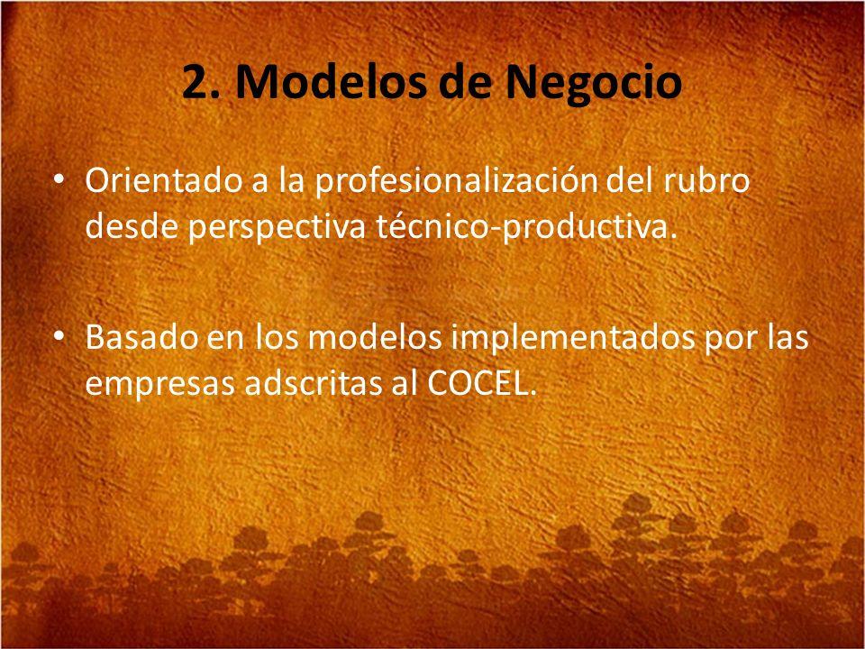 2. Modelos de Negocio Orientado a la profesionalización del rubro desde perspectiva técnico-productiva.