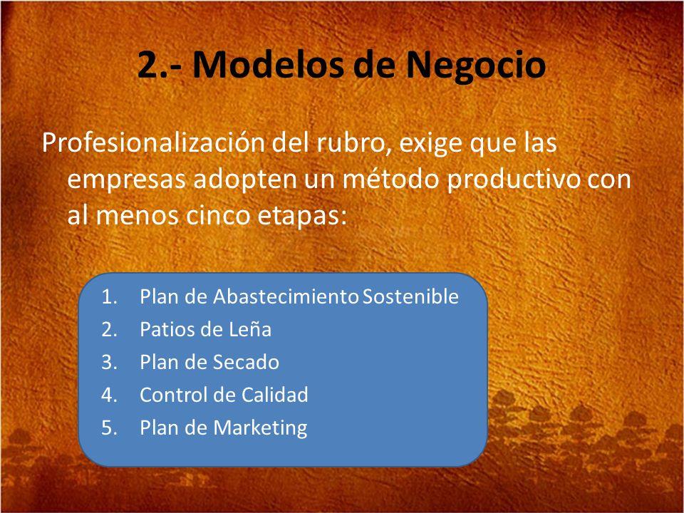 2.- Modelos de Negocio Profesionalización del rubro, exige que las empresas adopten un método productivo con al menos cinco etapas: