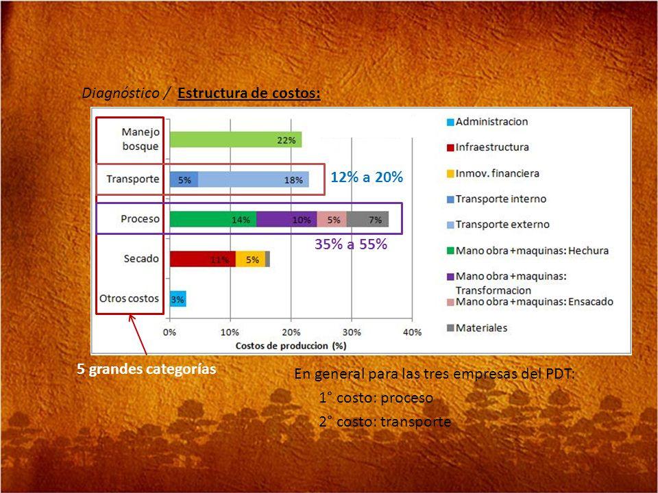 Diagnóstico / Estructura de costos: