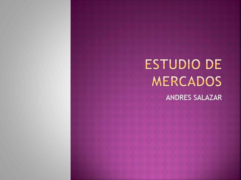 ESTUDIO DE MERCADOS ANDRES SALAZAR