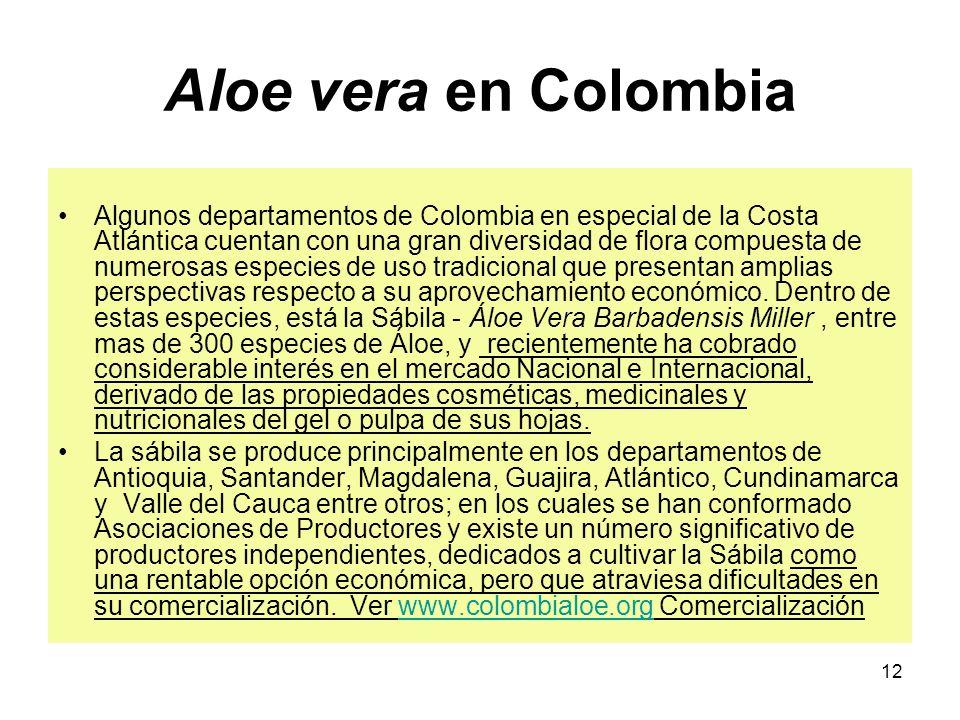 Aloe vera en Colombia