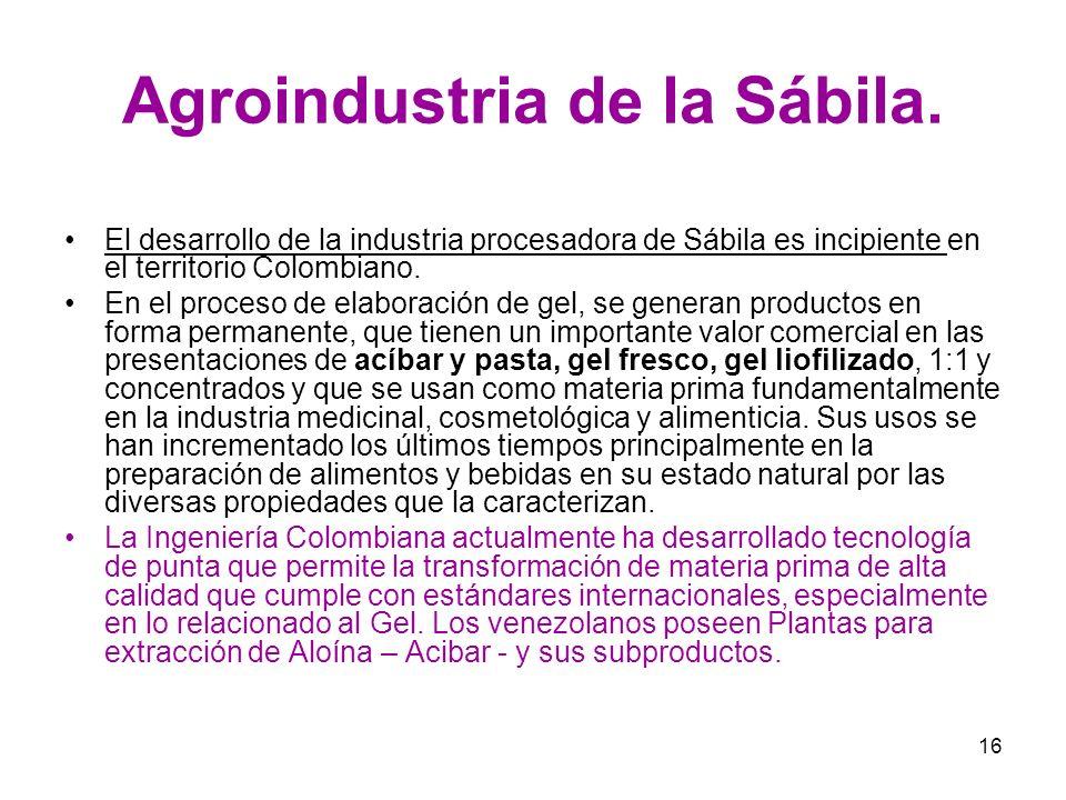 Agroindustria de la Sábila.