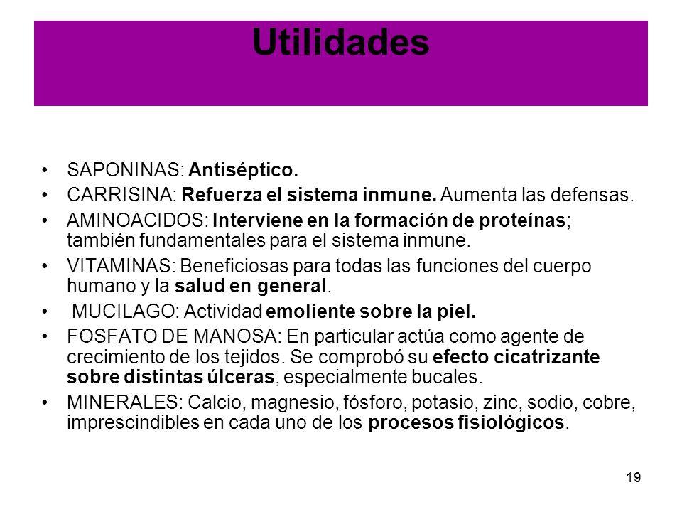 Utilidades SAPONINAS: Antiséptico.
