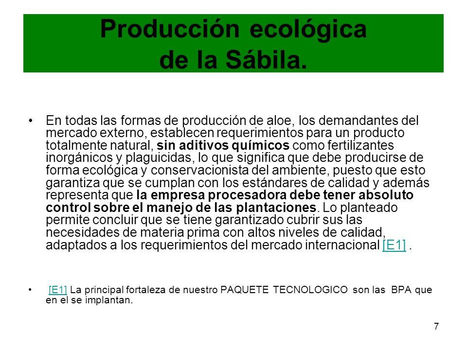 Producción ecológica de la Sábila.