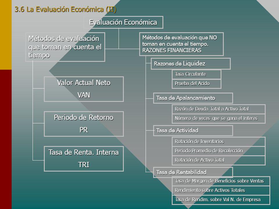 3.6 La Evaluación Económica (II)