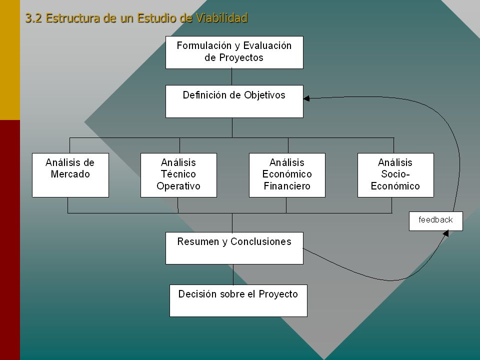 3.2 Estructura de un Estudio de Viabilidad