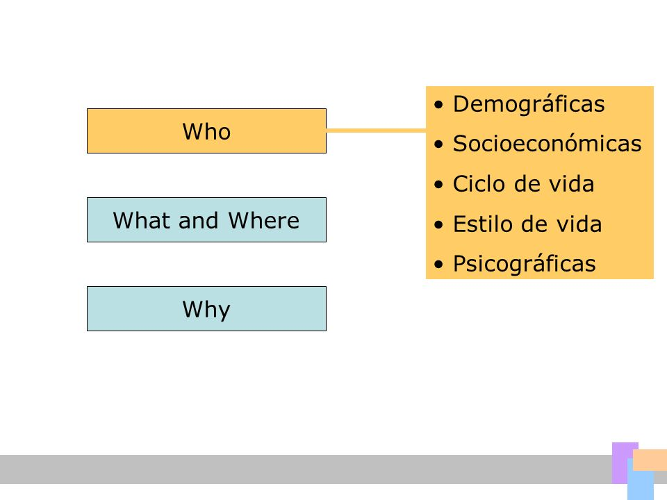 Demográficas Socioeconómicas Ciclo de vida Estilo de vida Psicográficas Who What and Where Why