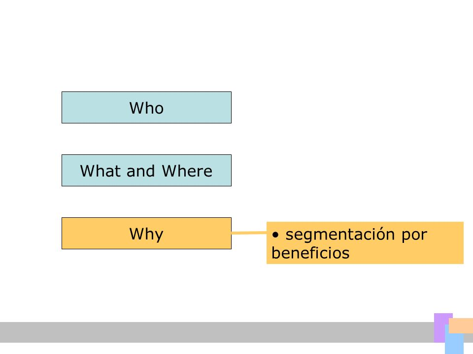 Who What and Where Why segmentación por beneficios