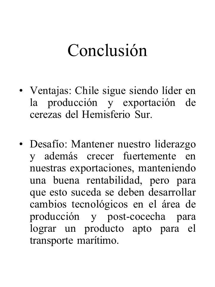 Conclusión Ventajas: Chile sigue siendo líder en la producción y exportación de cerezas del Hemisferio Sur.