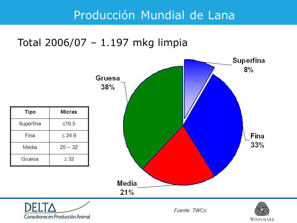 Producción Mundial de Lana