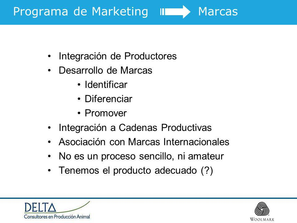 Programa de Marketing Marcas