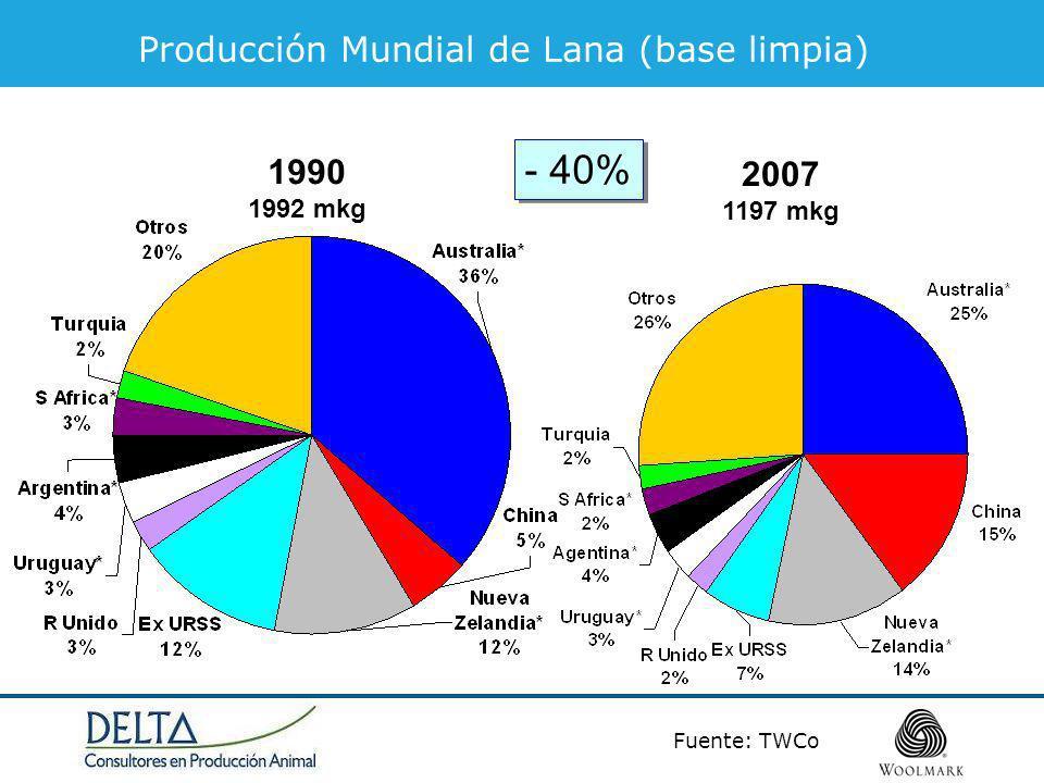 - 40% Producción Mundial de Lana (base limpia) 1990 2007 1992 mkg