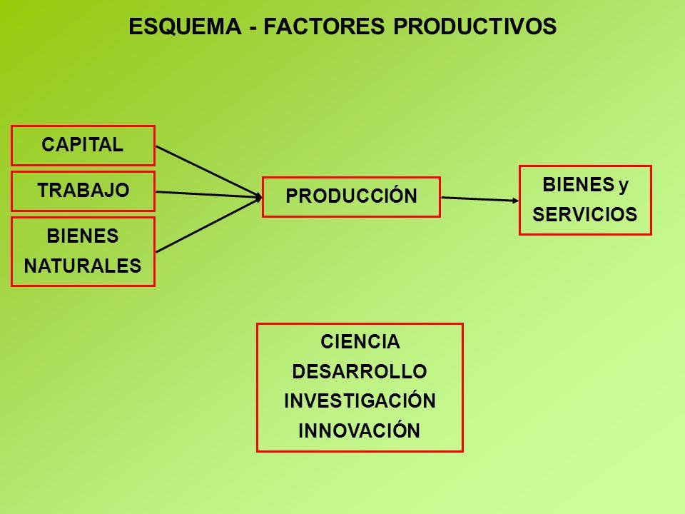 ESQUEMA - FACTORES PRODUCTIVOS INVESTIGACIÓN INNOVACIÓN