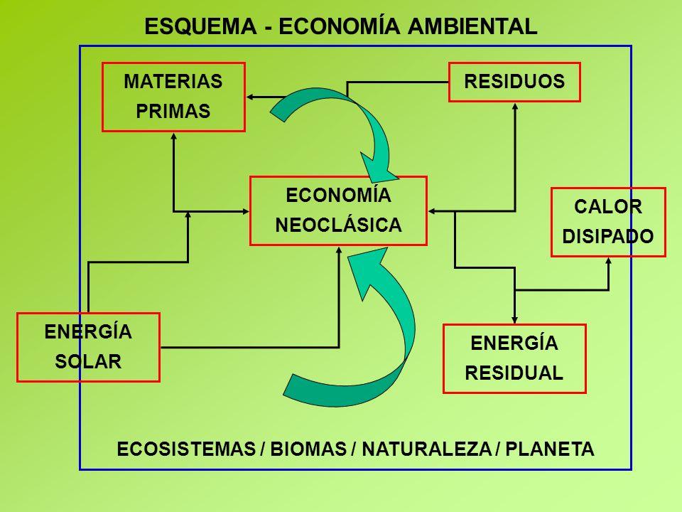ESQUEMA - ECONOMÍA AMBIENTAL