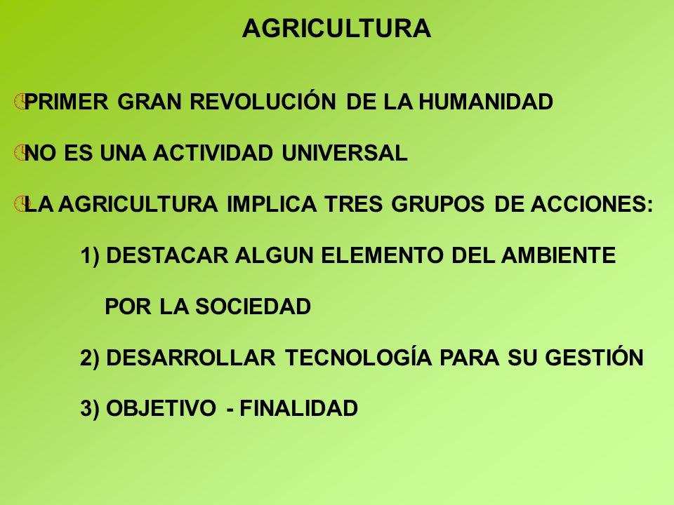 AGRICULTURA PRIMER GRAN REVOLUCIÓN DE LA HUMANIDAD