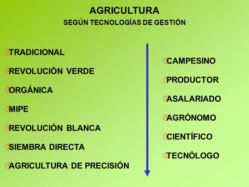 SEGÚN TECNOLOGÍAS DE GESTIÓN