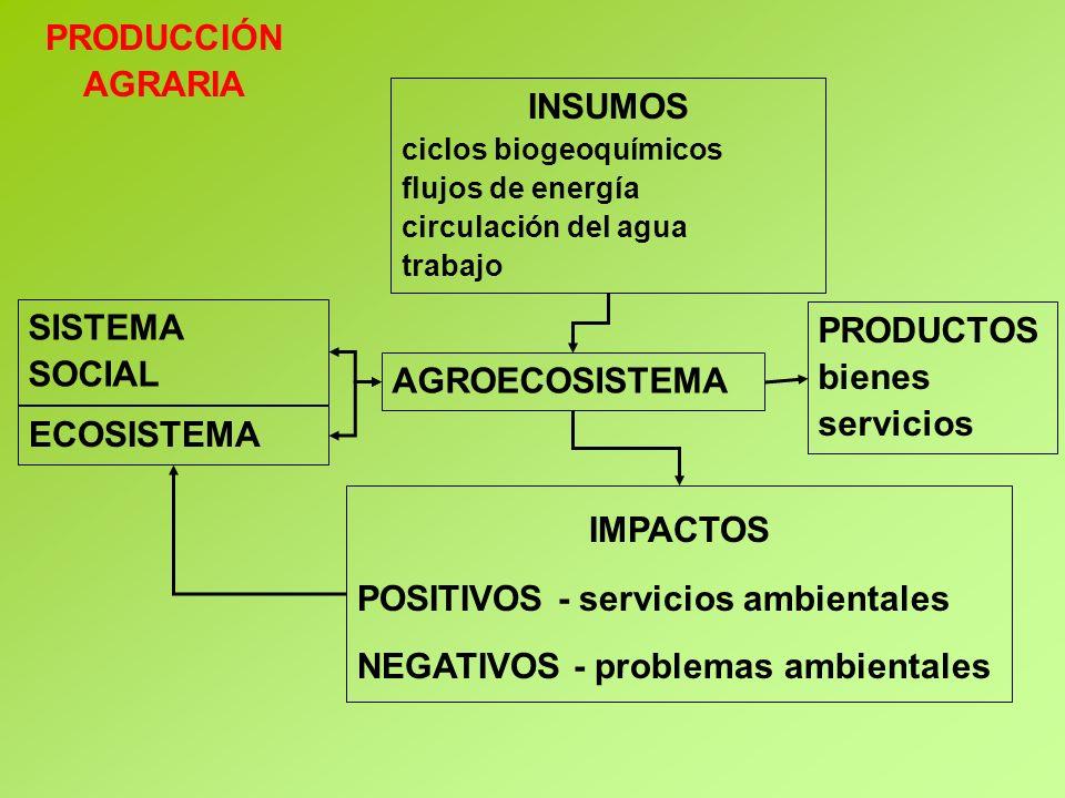 PRODUCCIÓN AGRARIA INSUMOS IMPACTOS