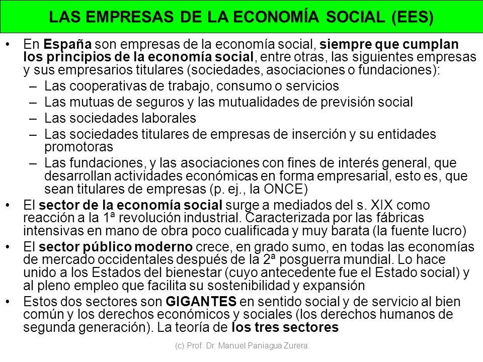LAS EMPRESAS DE LA ECONOMÍA SOCIAL (EES)