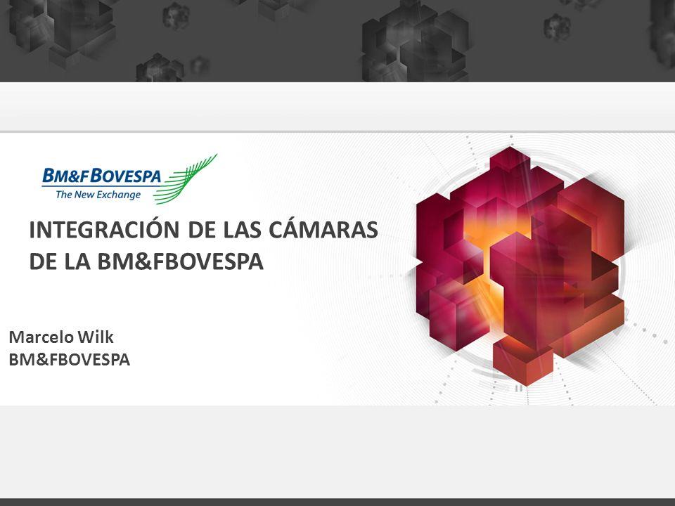 INTEGRACIÓN DE LAS CÁMARAS DE LA BM&FBOVESPA