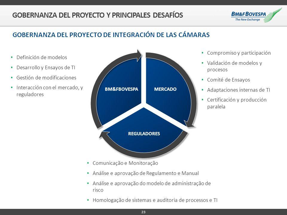 GOBERNANZA DEL PROYECTO Y PRINCIPALES DESAFÍOS
