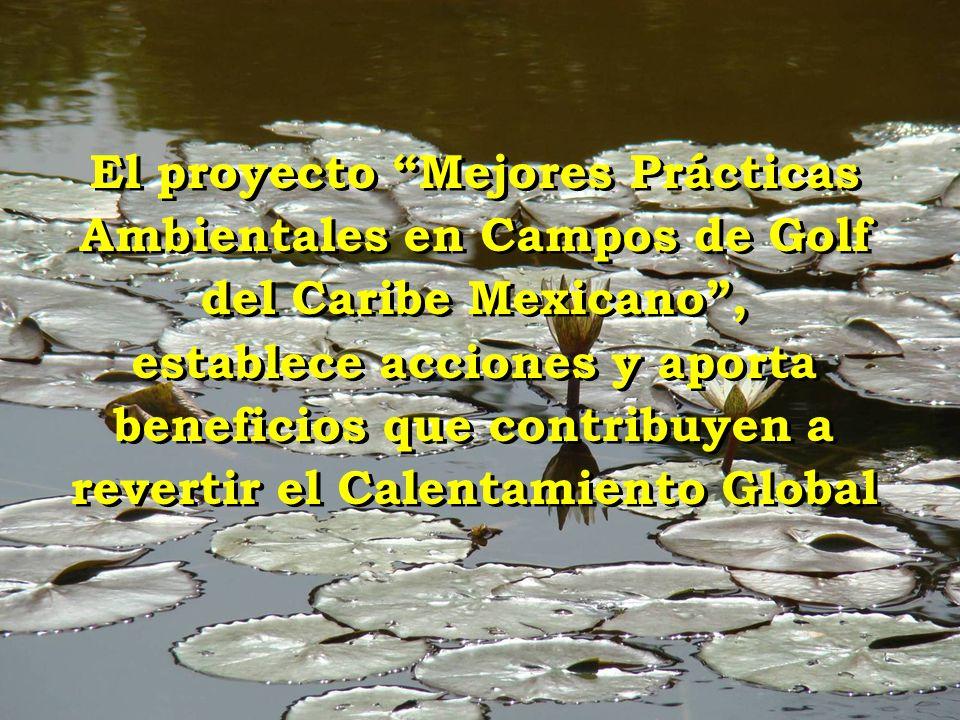 El proyecto Mejores Prácticas Ambientales en Campos de Golf del Caribe Mexicano , establece acciones y aporta beneficios que contribuyen a revertir el Calentamiento Global