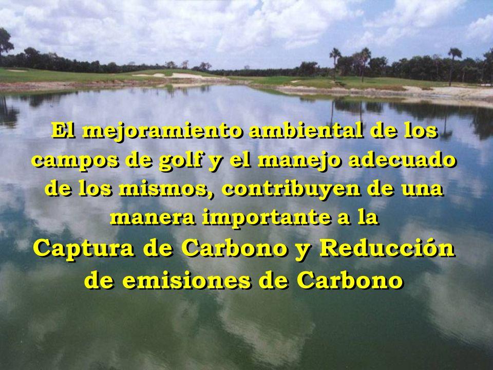 El mejoramiento ambiental de los campos de golf y el manejo adecuado de los mismos, contribuyen de una manera importante a la Captura de Carbono y Reducción de emisiones de Carbono