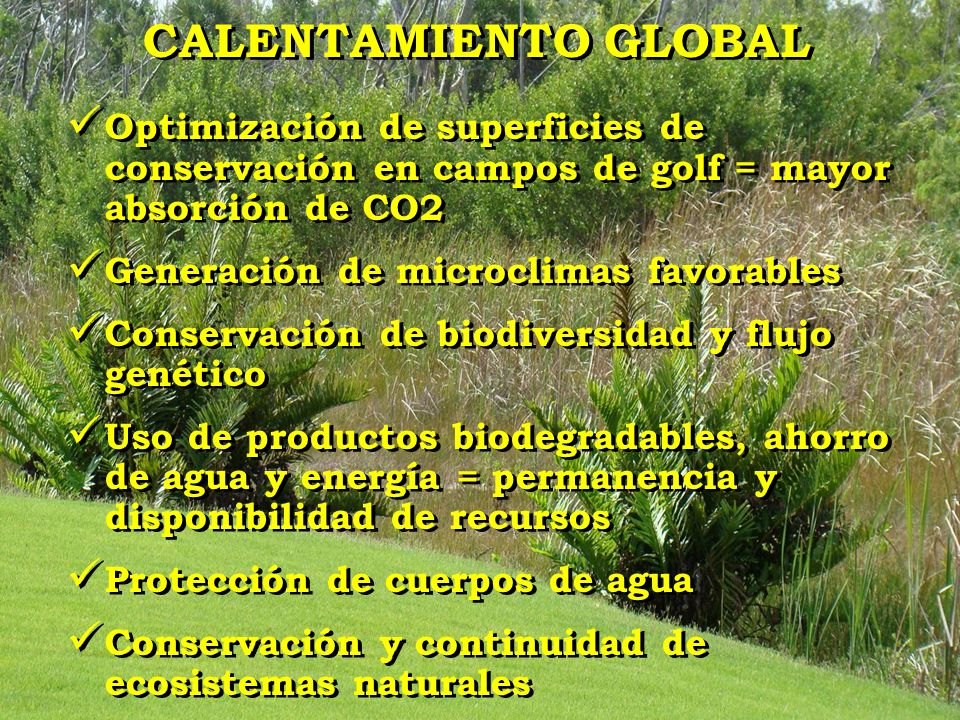 CALENTAMIENTO GLOBAL Optimización de superficies de conservación en campos de golf = mayor absorción de CO2.