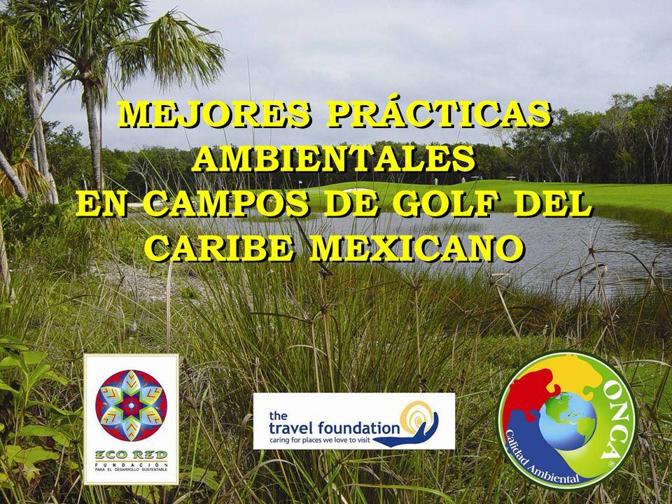 MEJORES PRÁCTICAS AMBIENTALES EN CAMPOS DE GOLF DEL CARIBE MEXICANO