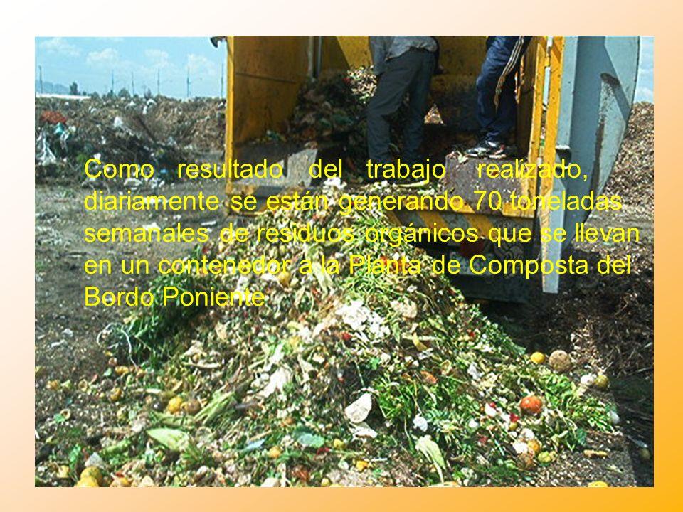 Como resultado del trabajo realizado, diariamente se están generando 70 toneladas semanales de residuos orgánicos que se llevan en un contenedor a la Planta de Composta del Bordo Poniente
