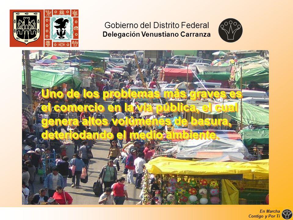 Gobierno del Distrito Federal Delegación Venustiano Carranza