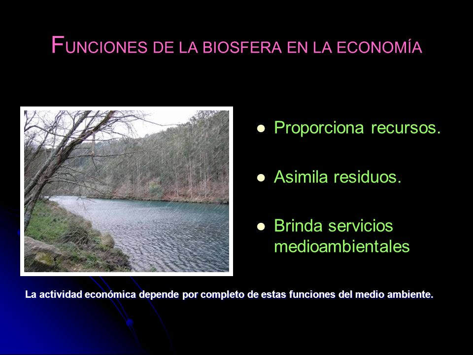FUNCIONES DE LA BIOSFERA EN LA ECONOMÍA