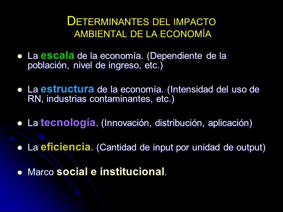 DETERMINANTES DEL IMPACTO AMBIENTAL DE LA ECONOMÍA