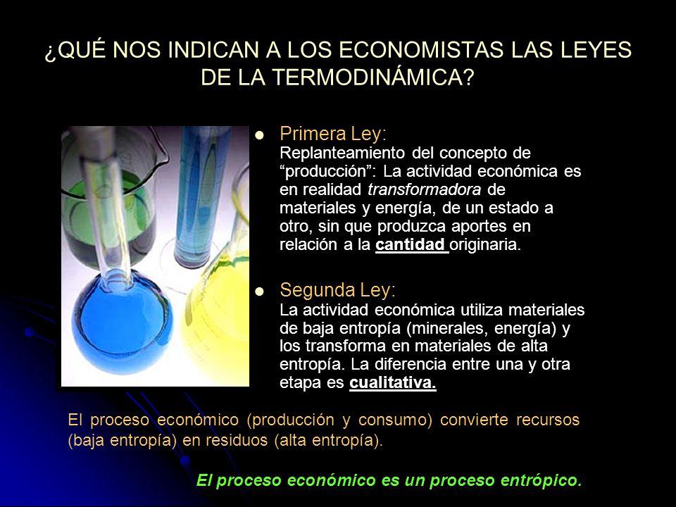 ¿QUÉ NOS INDICAN A LOS ECONOMISTAS LAS LEYES DE LA TERMODINÁMICA