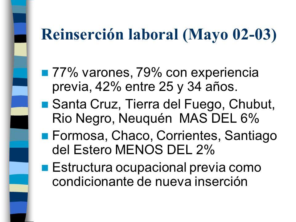 Reinserción laboral (Mayo 02-03)