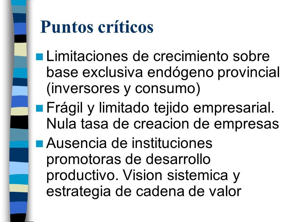 Puntos críticos Limitaciones de crecimiento sobre base exclusiva endógeno provincial (inversores y consumo)
