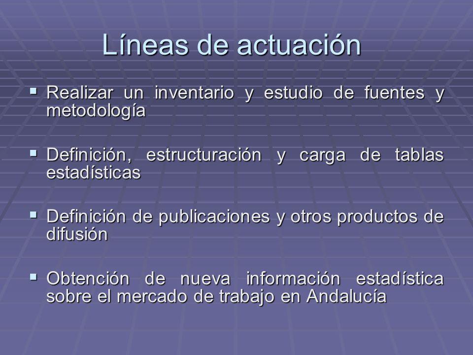 Líneas de actuación Realizar un inventario y estudio de fuentes y metodología. Definición, estructuración y carga de tablas estadísticas.