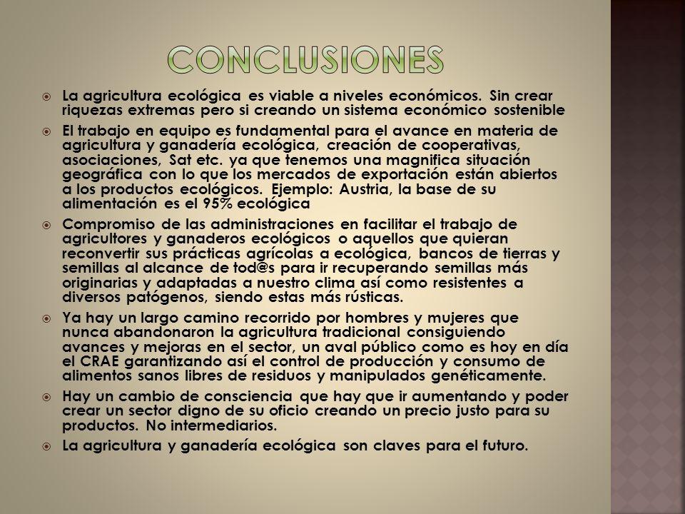 Conclusiones La agricultura ecológica es viable a niveles económicos. Sin crear riquezas extremas pero si creando un sistema económico sostenible.