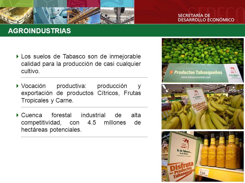 AGROINDUSTRIAS Los suelos de Tabasco son de inmejorable calidad para la producción de casi cualquier cultivo.