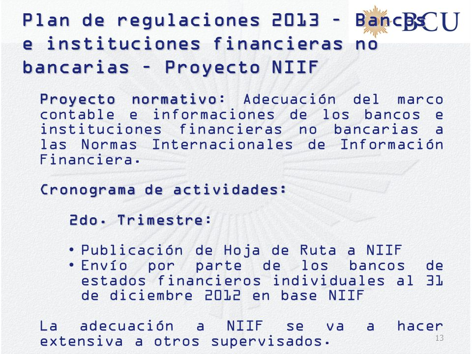 Plan de regulaciones 2013 – Bancos e instituciones financieras no bancarias – Proyecto NIIF