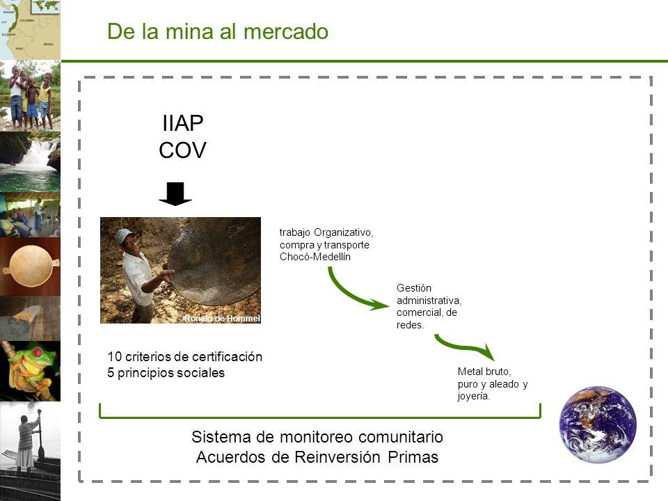 De la mina al mercado IIAP COV Sistema de monitoreo comunitario